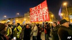 匈牙利人抗议普京访问