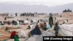 شمار بیجاشدهگان داخلی در افغانستان به گونۀ بی پیشینه افزایش یافته است