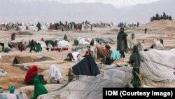 (ارشیف) افغانستان کې د جنګ جګړو او طبیعي پیښو له امله هرکال په سلګونو زره خلک خپلو مینو پریښودلو ته اړ کیږي.