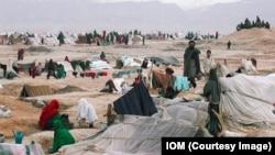 Afghanistan IDP