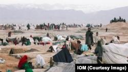 وزارت امور مهاجرین افغانستان میگوید که تنها سال گذشته نزدیک به یک میلیون افغان از محلات اصلی شان بیجا شده اند
