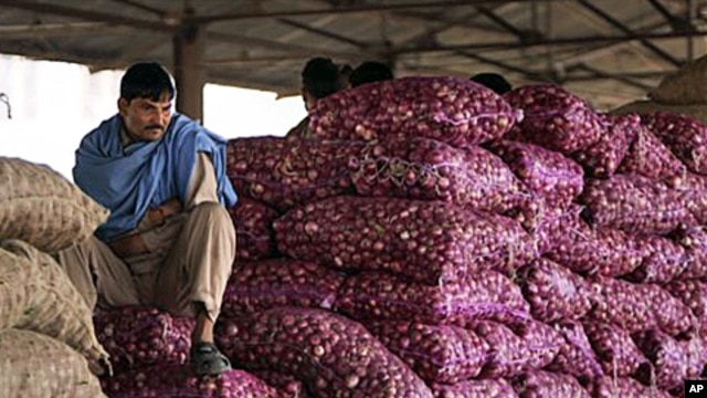 An Indian worker sits on sacks of onions at a wholesale market on the outskirts of Jammu, 22 Dec 2010