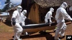 라이베리아 몬로비아 외곽에서 보건 요원들이 에볼라 바이러스 감염에 의해 사망한 것으로 의심되는 환자의 시신을 옮기고 있다.