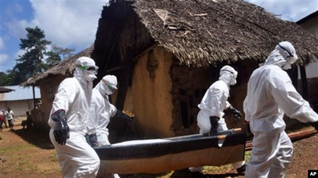 experts-ebola-best-controlled-at-source