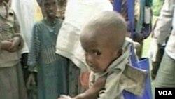 Yon Pwogram Pou Anpeche Malaria Antre Sou Moun