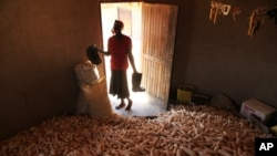 FILE: A woman stands in a hut filled with maize grain in Epworth, on the outskirts of Harare, Zimbabwe, Tuesday, Oct. 16, 2012.