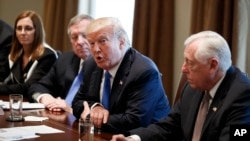 FILE: President Donald Trump speaks during a meeting with lawmakers on immigration policy in the Cabinet Room of the White House, Jan. 9, 2018, in Washington.