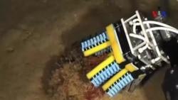 Robot phức tạp có thể cầm nắm sinh vật biển mong manh