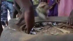 Vous et Nous : recyclage de pneus au Sénégal
