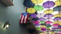 Exibición en Puerto Rico invita a apreciar el arte de la isla
