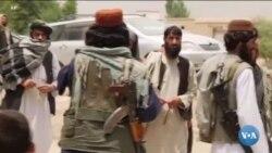 Afg'on tarjimonlar: Tolibon bizni kechirmaydi