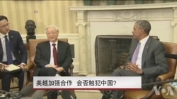 美越加强合作 会否触犯中国?