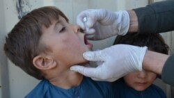 کندوز کې له پولیو واکسین څخه د پاتې شویو ماشومانو شمېر کم شوی