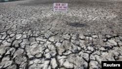 Đồng lúa bị hạn hán tại tỉnh Bạc Liêu, đồng bằng sông Cửu Long, Việt Nam, ngày 30/3/2016.