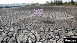 Bảng bán đất trên một cánh đồng lúa bị hạn hán tại tỉnh Bạc Liêu, Việt Nam, ngày 30/3/2016.