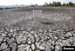 "A sign which reads ""Land for sale or for lease"" is seen placed on a drought-affected rice field in Bac Lieu province"