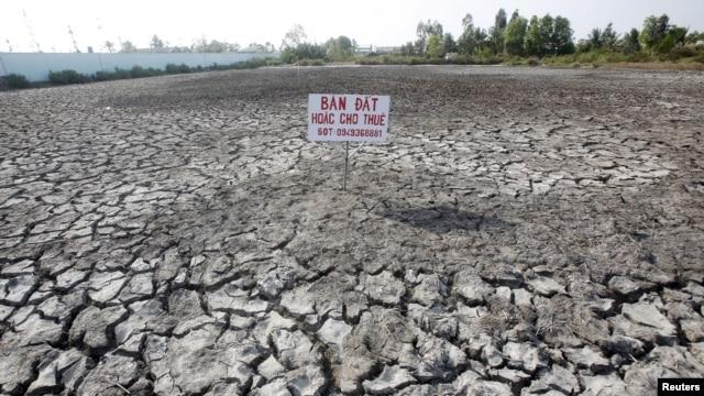 Thành phố Cần Thơ trong những năm gần đây đã cảm nhận rõ tác động của biến đổi khí hậu, thể hiện qua các chỉ dấu như mức tăng nhiệt độ không khí, lượng mưa, mức độ ngập lụt, hạn hán, xâm nhập mặn và một số thiên tai khác.