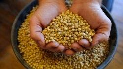 兩黨議員認同美農民為貿易戰犧牲品盼G20為談判帶來轉機
