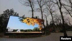北京某处,荧屏上的蓝天秋色和周围雾霾中的冬日灰色形成对比。(2016年12月17日)