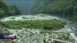 EU pravilo:I BiH će morati izbaciti plastične kese iz upotrebe