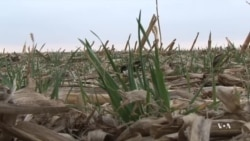 Kansas Farmers Work to Prevent Depletion of Ogallala Aquifer
