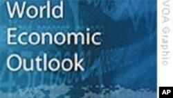 IMF:保持世界经济复苏需要政府继续支持