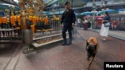 A Thai police officer and his dog inspect around the Erawan shrine during the first anniversary of the shrine's bombing in central Bangkok, Thailand, Aug. 17, 2016. Security has been stepped up at tourist sites.