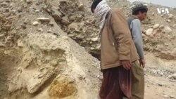 معتادین: کارفرمایان ایرانی برای ما تریاک فراهم می کردند