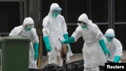 Petugas kesehatan di Hong Kong memusnahkan unggas yang dijual di pasar karena adanya virus flu burung H7N9. (Reuters/Bobby Yip)
