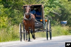 FILE In this photo made on Wednesday, June 23, 2021, a horse drawn buggy is driven down the road near Amish farms in Pulaski, Pa. (AP Photo/Keith Srakocic)