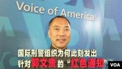 时事大家谈:国际刑警组织为何此刻通缉郭文贵?
