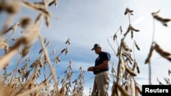 VOA Asia - U.S. soybean farmers may get a break from China trade tariffs
