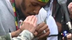 呼吁修改缉毒法:活动人士国会山吸大麻