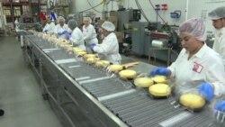 Bisnis Sukses Chicago Pekerjakan Karyawan Pengungsi