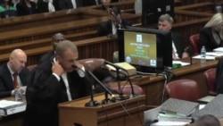 Pistorius pidió a amigo asumir culpa por disparo