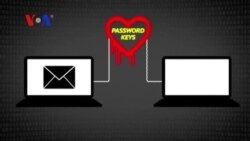 Is 'Heartbleed' Internet Flaw Still a Threat? (VOA On Assignment May 2, 2014)