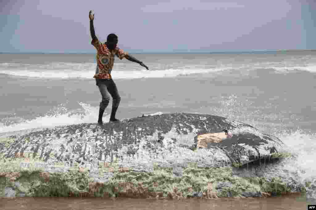 A man stand on a dead whale in Kokrobite, a coastal village just outside Accra. Five whales have washed ashore within three days in Ghana.
