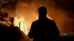 У Ріо-де-Жанейро згоріла найстаріша наукова інституція країни. Відео