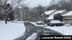 La primera tormenta invernal de 2019, ha traído de 10 a 20 centímetros de nieve en el área metropolitana de Washington, que incluye los estados de Virginia y Maryland.