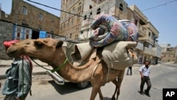 Lạc đà được dùng để vận chuyển trong các vùng sa mạc. Các khoa học gia nói rằng virut gây hội chứng MERS đã lây nhiễm cho các con lạc đà ở Ả Rập Xê-út ít nhất từ 20 năm qua và rằng các ca con người bị nhiễm bệnh có lẽ đã không được biết trước đây