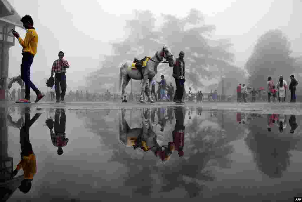A man walks with a horse past a puddle in the northern hill town of Shimla, India.
