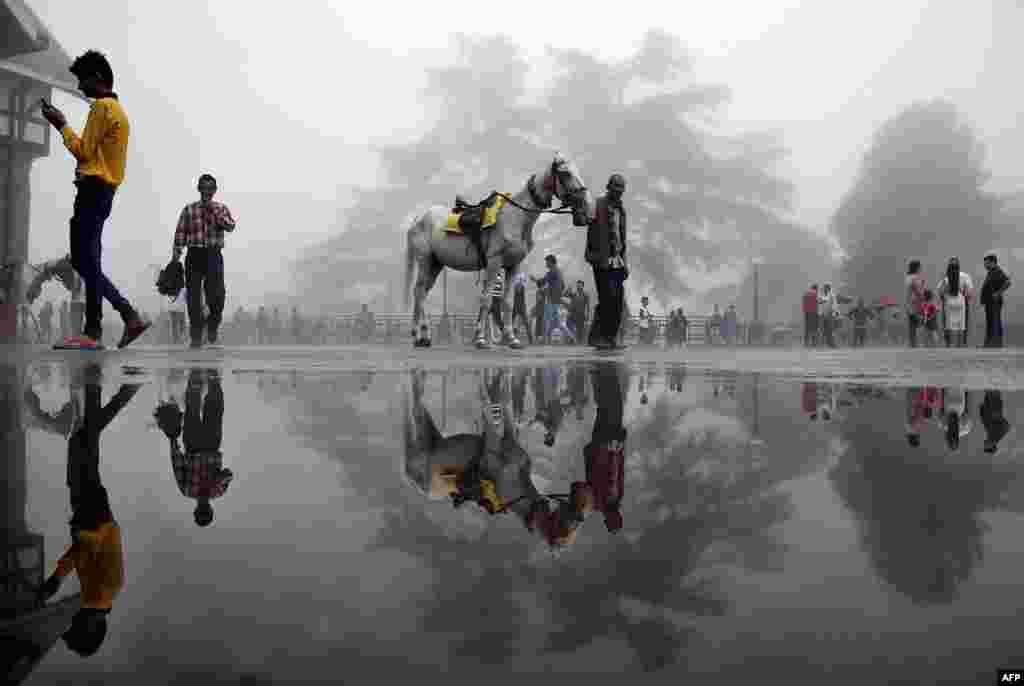 Seorang pria berjalan dengan seekor kuda melewati kubangan di kota bukit Shimla utara, India.