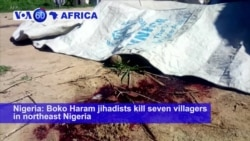 VOA60 Africa - Boko Haram jihadists kill seven villagers in northeast Nigeria