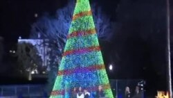 奧巴馬總統點亮國家聖誕樹