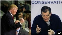 """川普(左)指稱克魯茲(右) """"竊取""""共和黨愛奧華州黨團會議勝利"""