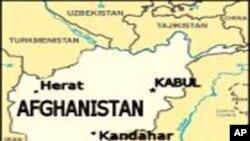 ئهفغانستان گهرهکێتی 50 تاڵیبان له لیستی ڕهشی ناتۆ وهدهربکرێن