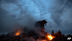 马来西亚班机在东乌克兰坠毁