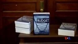 2015-02-04 美國之音視頻新聞: 經濟學家:聯邦預算用意好但難實現