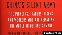 中国的沉默大军。(图片来源:卡德纳尔)