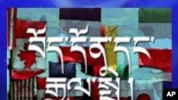 བོད་མིའི་ལས་འགུལ་ལ་རྒྱལ་སྤྱིའི་དོ་སྣང་།